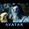 Download jake sully in avatar wallpapers, jake sully in avatar wallpapers Free Wallpaper download for Desktop, PC, Laptop. jake sully in avatar wallpapers HD Wallpapers, High Definition Quality Wallpapers of jake sully in avatar wallpapers.