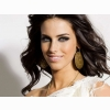 Jessica Lowndes 10 Wallpaper