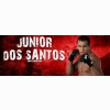 Junior Dos Santos Cover