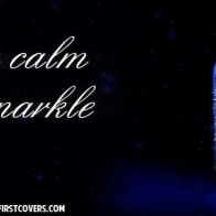 Keep Calm And Sparkle Cover