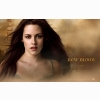 Kristen Stewart In The Twilight Saga New Moon Wallpaper