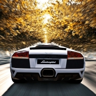 Lamborghini Lp640 Car Wallaper Wallpaper