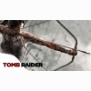 Lara Croft Tomb Raider Wallpapers