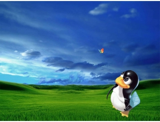 Linux Hunting Windows Wallpapers