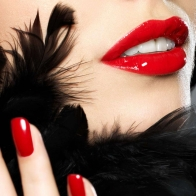 Lips Hd Wallpaper 17