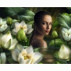 Lotus Beauty Abstract Wallpapers