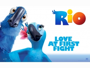 Love At First Fight Rio Wallpapers