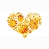 Love Heart With Flowers