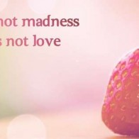 Love Madness Facebook Timeline Cover