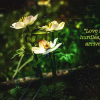 Download love recognizes no barriers cover, love recognizes no barriers cover  Wallpaper download for Desktop, PC, Laptop. love recognizes no barriers cover HD Wallpapers, High Definition Quality Wallpapers of love recognizes no barriers cover.
