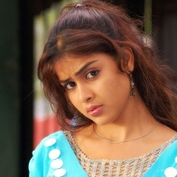 Lovely Genelia Gorgeous Wallpaper