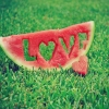 Download lovely watermelon love grass wallpapers, lovely watermelon love grass wallpapers Free Wallpaper download for Desktop, PC, Laptop. lovely watermelon love grass wallpapers HD Wallpapers, High Definition Quality Wallpapers of lovely watermelon love grass wallpapers.