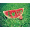Lovely Watermelon Love Grass Wallpapers