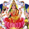 Download maa laxmi desktop wallpaper, maa laxmi desktop wallpaper  Wallpaper download for Desktop, PC, Laptop. maa laxmi desktop wallpaper HD Wallpapers, High Definition Quality Wallpapers of maa laxmi desktop wallpaper.