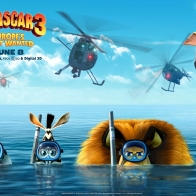 Madagascar 3 2012 Movie Wallpapers