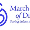 Download march of dimes cover, march of dimes cover  Wallpaper download for Desktop, PC, Laptop. march of dimes cover HD Wallpapers, High Definition Quality Wallpapers of march of dimes cover.