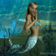 Marmaid Hd Wallpaper 17