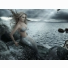 Marmaid Hd Wallpaper 20