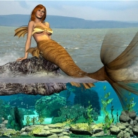 Marmaid Hd Wallpaper 29