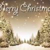 Download merry christmas cover 51, merry christmas cover 51  Wallpaper download for Desktop, PC, Laptop. merry christmas cover 51 HD Wallpapers, High Definition Quality Wallpapers of merry christmas cover 51.