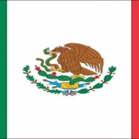 Mexican Flag Cover