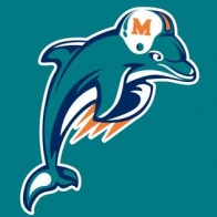 Miami Dolphins Cover