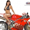 Download model xtreambike wallpaper, model xtreambike wallpaper  Wallpaper download for Desktop, PC, Laptop. model xtreambike wallpaper HD Wallpapers, High Definition Quality Wallpapers of model xtreambike wallpaper.