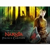 Narnia Price Caspian Wallpaper