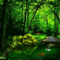 Nature Hd Wallpaper 48