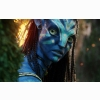 Neytiri Beautiful Warrior In Avatar Wallpapers
