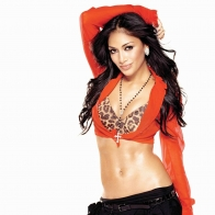 Nicole Scherzinger (7) Hd Wallpapers