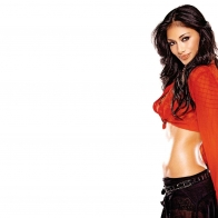 Nicole Scherzinger Hd Wallpapers