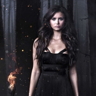 Nina Dobrev In The Vampire Diaries