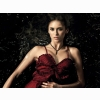 Nina Dobrev The Vampire Diaries Wallpaper