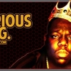 Download notorious big cover, notorious big cover  Wallpaper download for Desktop, PC, Laptop. notorious big cover HD Wallpapers, High Definition Quality Wallpapers of notorious big cover.