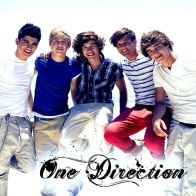 One Drection 2013
