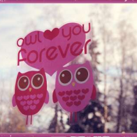 Owl Love You Forever Cover