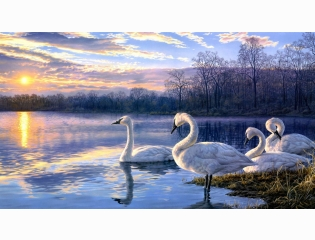 Painting Art Hd Wallpaper 6