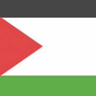 Palestine Flag Cover