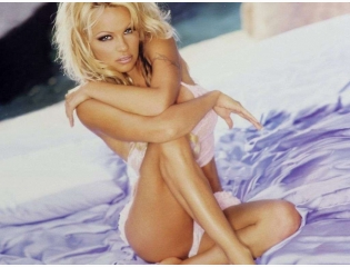 Pamela Anderson Wallpaper Wallpapers