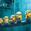 Download Paradise Minions Despicable Me 2 Hd Wallpapers, Paradise Minions Despicable Me 2 Hd Wallpapers Hd Wallpaper download for Desktop, PC, Laptop. Paradise Minions Despicable Me 2 Hd Wallpapers HD Wallpapers, High Definition Quality Wallpapers of Paradise Minions Despicable Me 2 Hd Wallpapers.