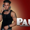 Download pauly d cover, pauly d cover  Wallpaper download for Desktop, PC, Laptop. pauly d cover HD Wallpapers, High Definition Quality Wallpapers of pauly d cover.