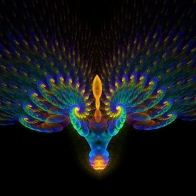 Peacock Art Design 20 Hd Wallpapers
