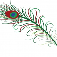 Peacock Art Design 53 Hd Wallpapers