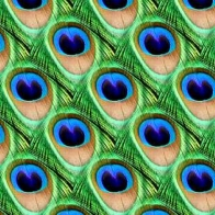 Peacock Pattern Cover