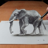 Pencil Art Hd Wallpaper 53