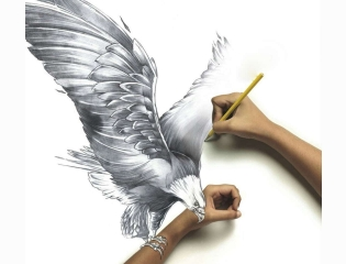 Pencil Art Hd Wallpaper 81