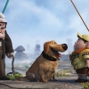 Download pixar 039 s up movie widescreen wallpapers, pixar 039 s up movie widescreen wallpapers Free Wallpaper download for Desktop, PC, Laptop. pixar 039 s up movie widescreen wallpapers HD Wallpapers, High Definition Quality Wallpapers of pixar 039 s up movie widescreen wallpapers.