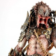 Predator, Alien, Humanoid, Pic Wallpapers