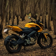 Pulsar 200 Ns In Yellow